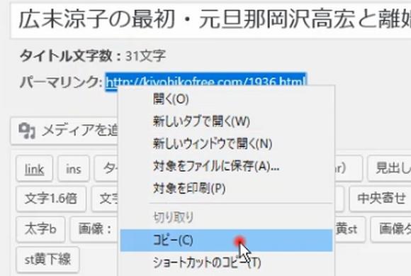 Fetch as googleの使い方と登録記事インデックス確認方法~SearchConsole7