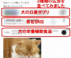 ブログに、Googleアドセンスの広告のコードを貼り付けると、自動で広告が選ばれて表示されます