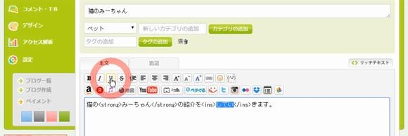 Seesaaブログ(シーサーブログ)無料ブログ新規登録・記事投稿方法10