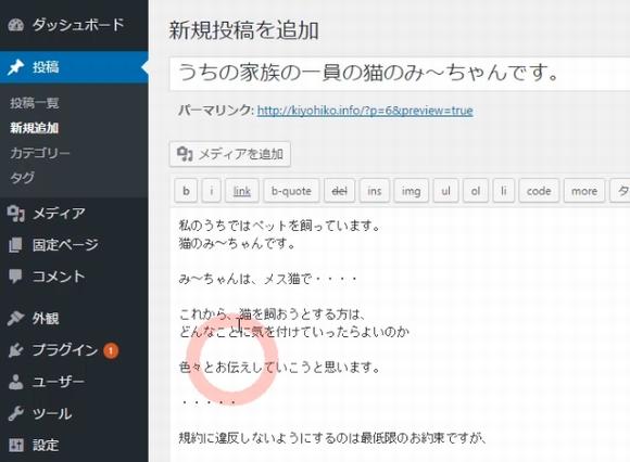 Googleアドセンス審査用ブログ具体的な作り方~WordPress初期設定・記事投稿2