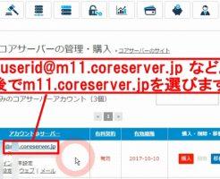 コアサーバーで他社ドメインを使うバリュードメインDNS設定方法2