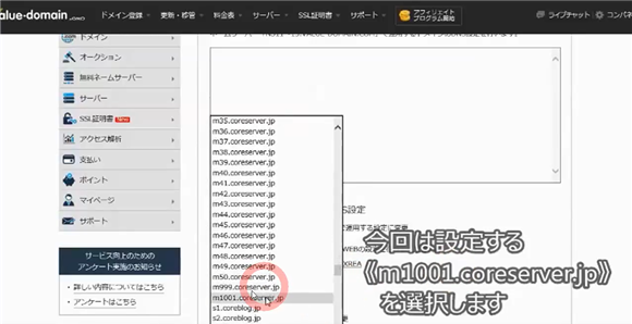 バリュードメイン~ネームサーバーとDNSの設定方法(コアサーバー)14