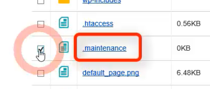 「.maintenance」(ファイル)の左にある四角□にチェックを入れます。
